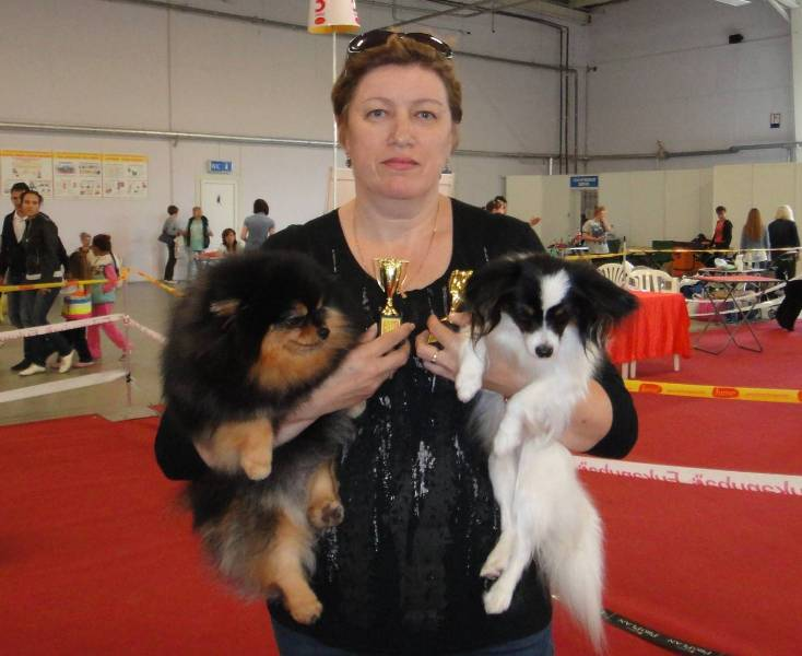 KAZAN. INTERNATIONAL DOG SHOW CACIB.